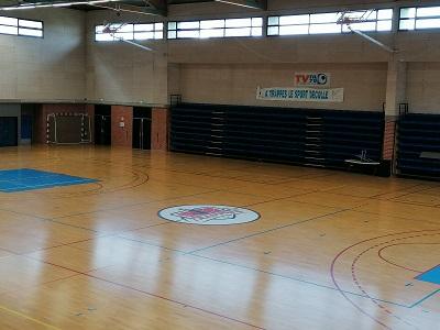 Entreprise peinture LOGO terrain sport - Paris - Trace Plus